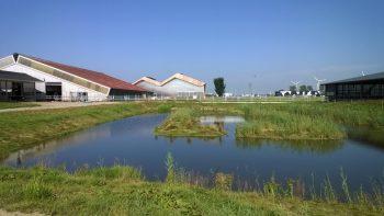 Ledenbijeenkomst bij Wetsus en Dairy Campus