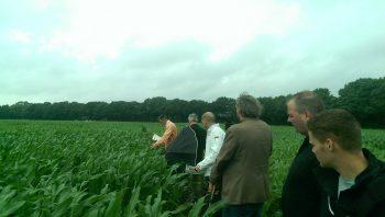 Groen fosfaat oplossing voor Europese afhankelijkheid van import fosfaat?